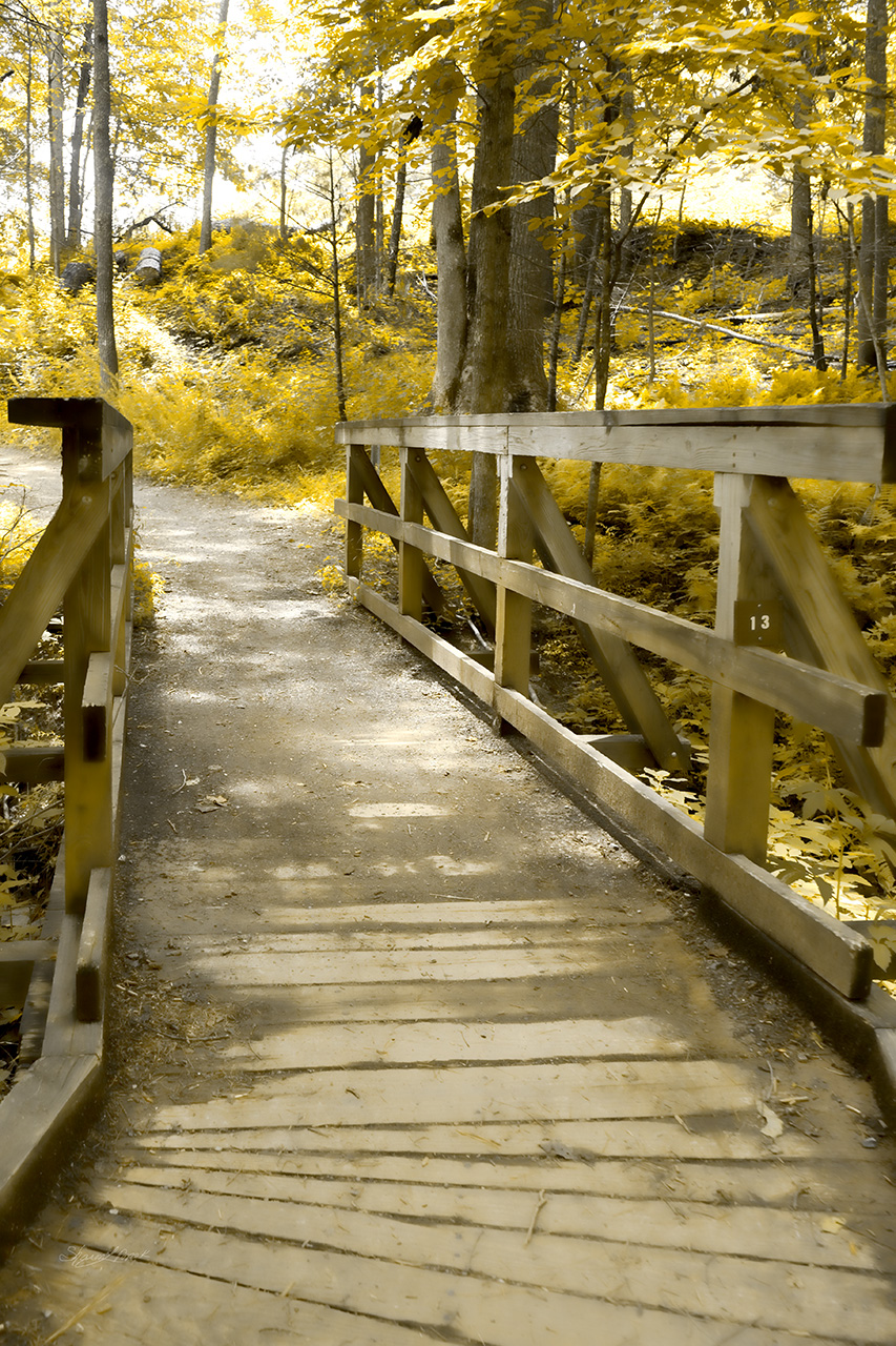 The Bridge Over