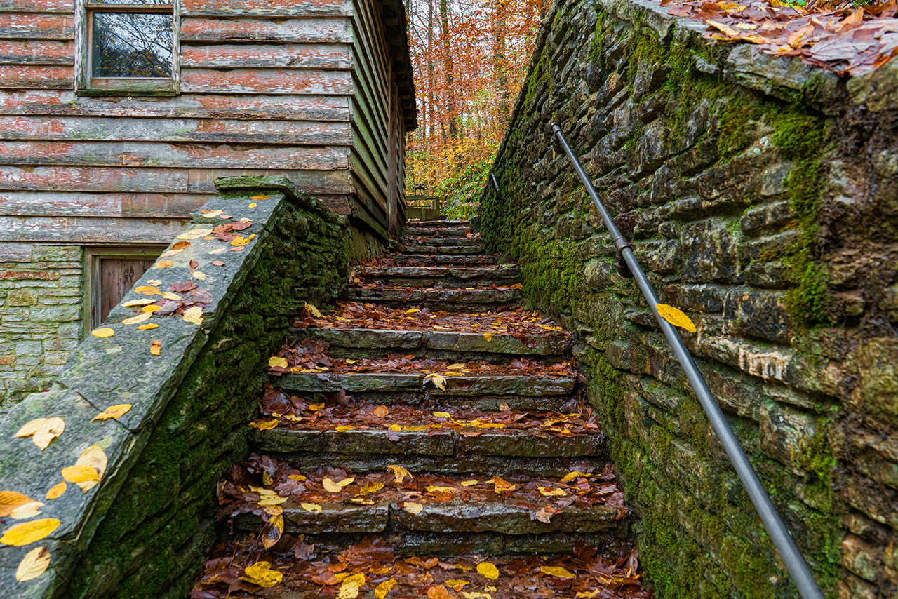 Fall Up Stairs