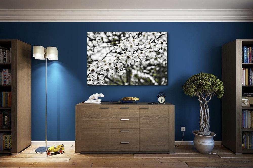 Dark dogwood blossoms 5171sm