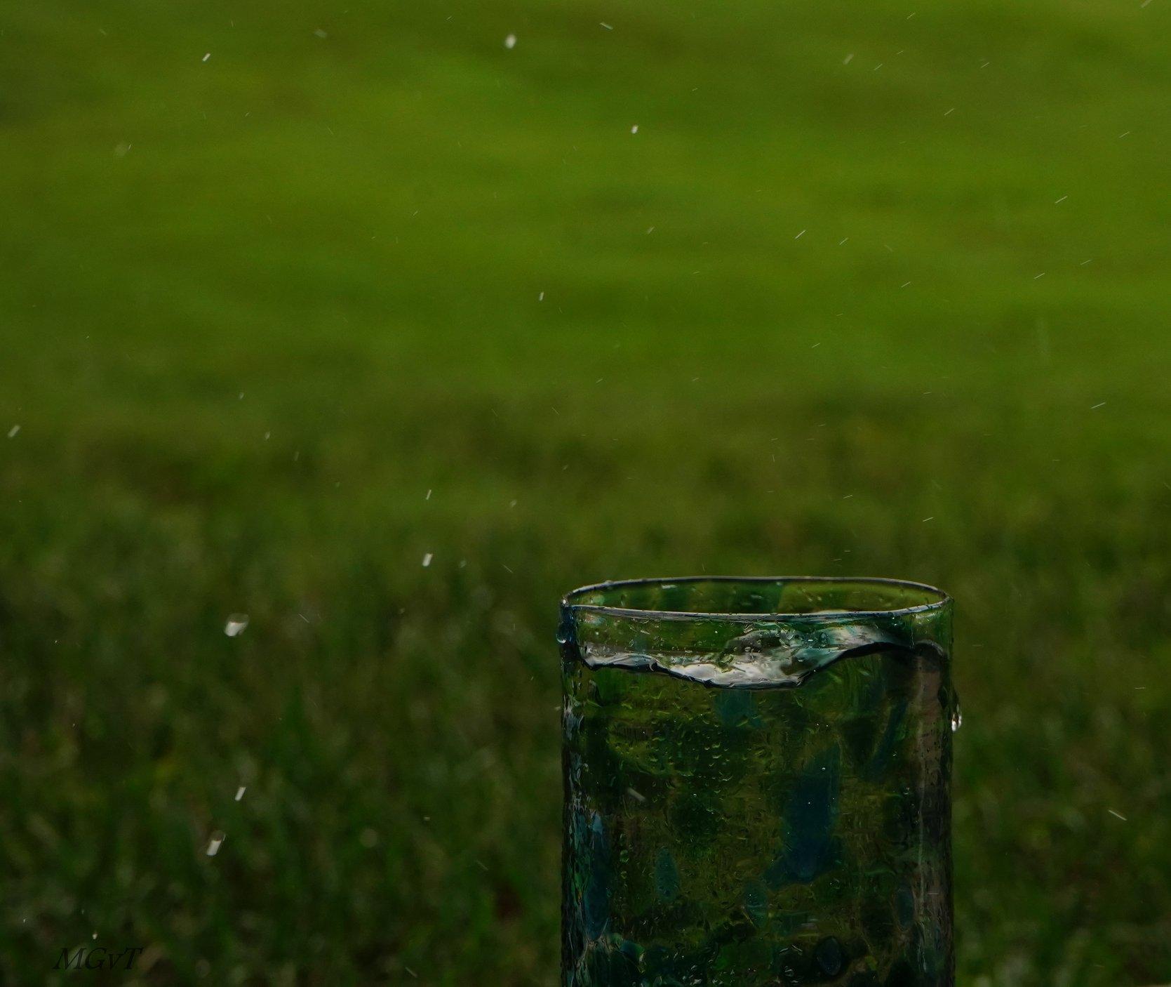 Glass in Rain
