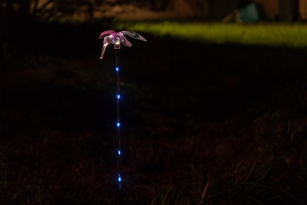 Lights at night-4